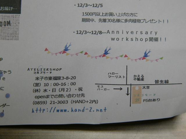 P1120373.jpg