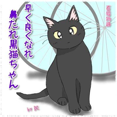 鼻たれ黒猫ちゃん