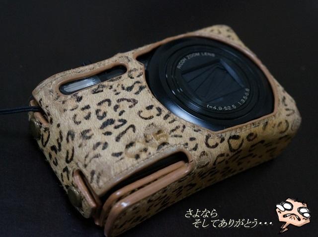 DSC06016.jpg