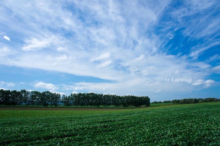 201208kand9.jpg