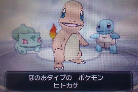 pokemon_015.jpg