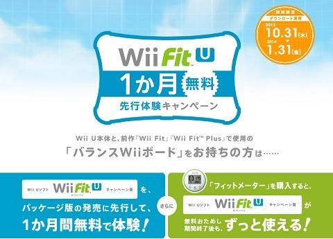 wiifit_002s.jpg