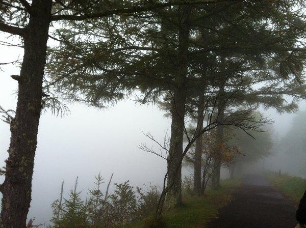 靄の女神湖ー6
