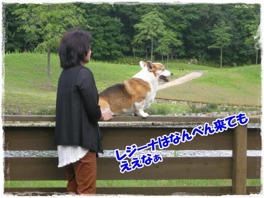 2013年6月から ブログ用0317