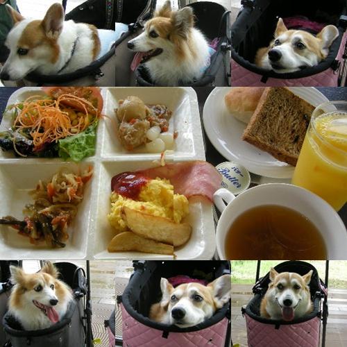レジーナ 朝食
