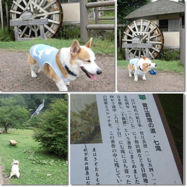 小坂町 滝で