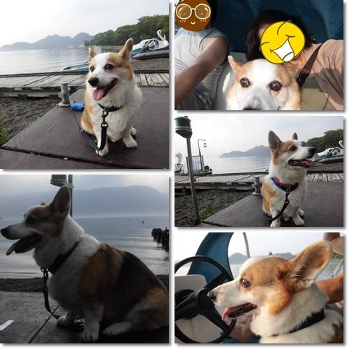 十和田湖 白鳥ボート