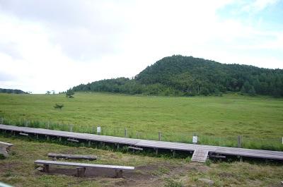 湿原景色 木道