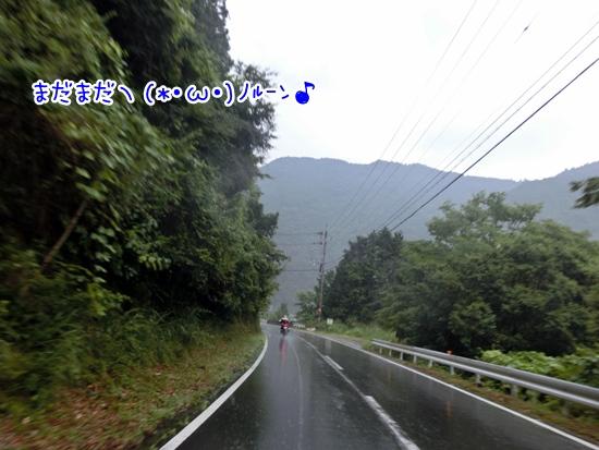 CIMG1317.jpg