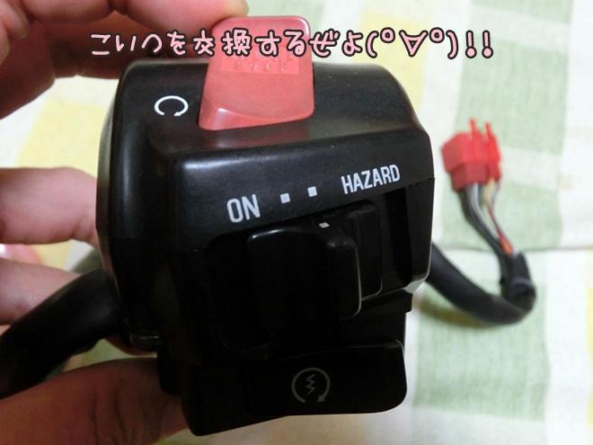 CIMG9505.jpg