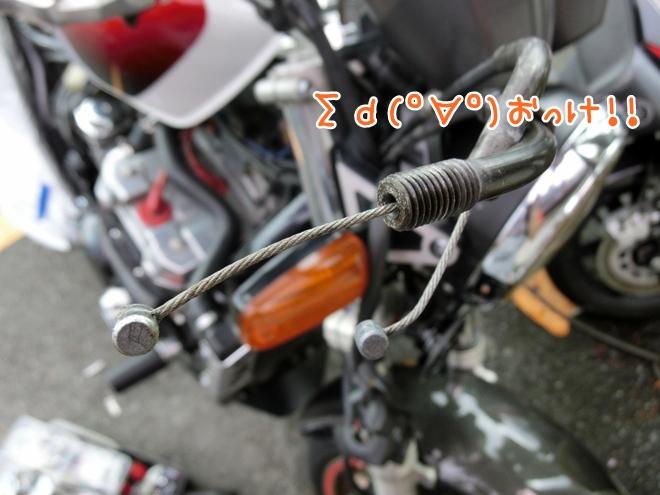 CIMG9513.jpg