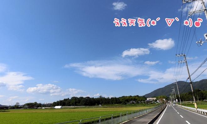 CIMG9541.jpg