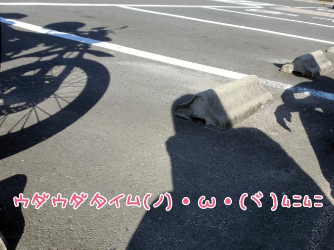 CIMG9560.jpg
