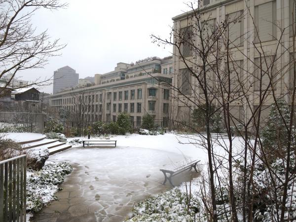 雪遊び 2/8/2014
