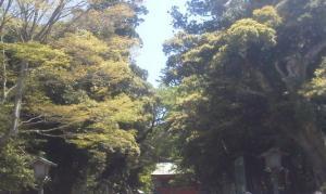 KIMG1073鹿島神宮_convert_20130429070405