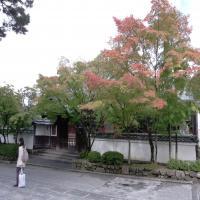 Eikando+temple_convert_20131024101259.jpg