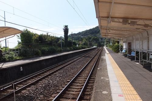 DSCF6562.jpg
