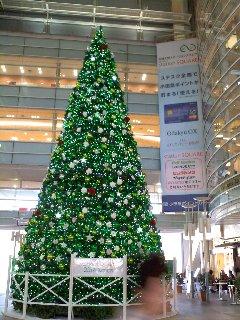 11/13 駅モール内のクリスマスツリー