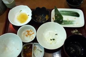 Shirasu_Kujira_1411-106.jpg