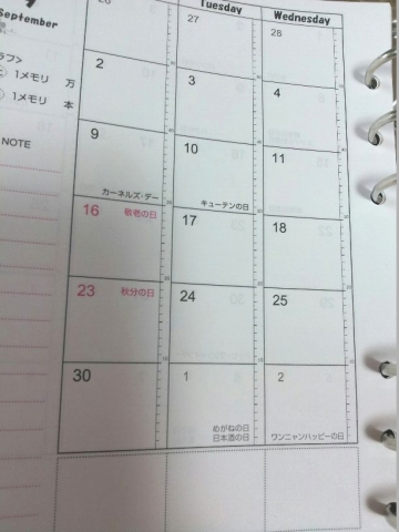 Club Diary (5)