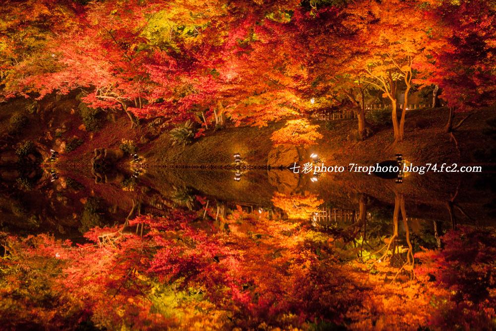2014-11-22_栗林_0168_edited-1