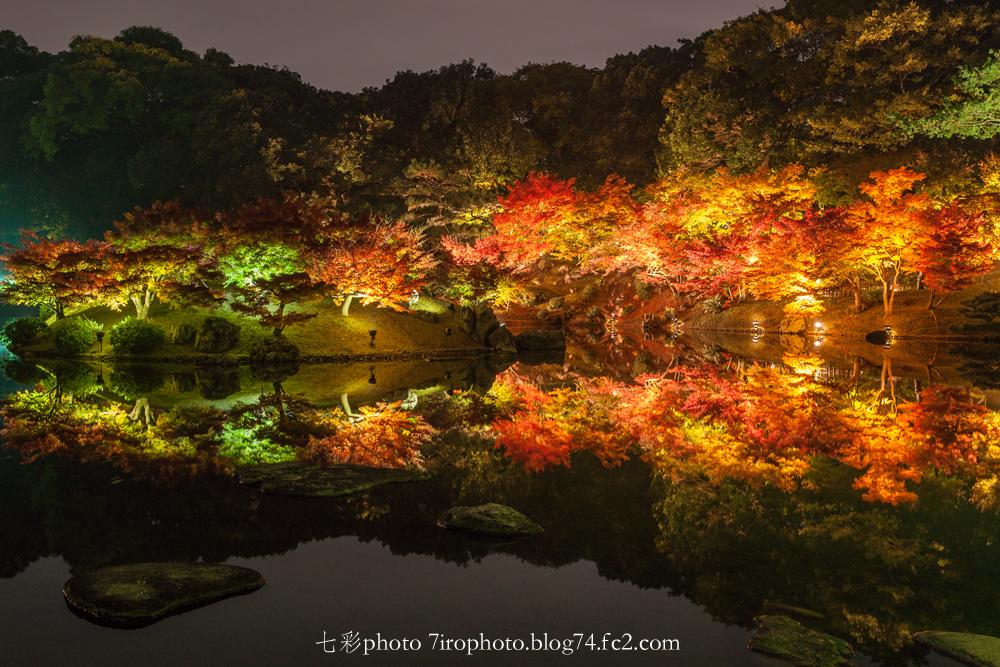 2014-11-22_栗林_0164_edited-1