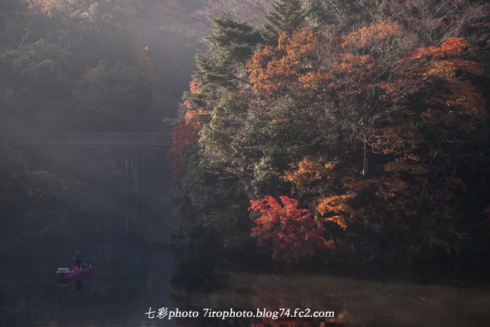 2014-11-30_千葉紅葉_0016_edited-1