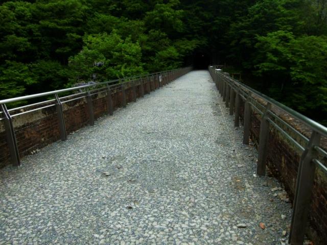 碓氷第三橋梁(めがね橋) (2)
