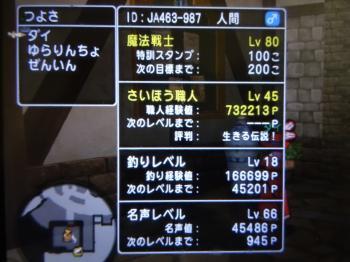 DSC01374_convert_20141210224855.jpg