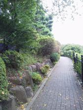 西郷山公園 小道