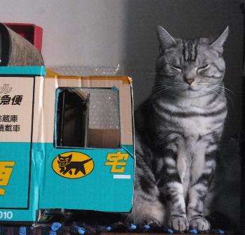 猫の置物?