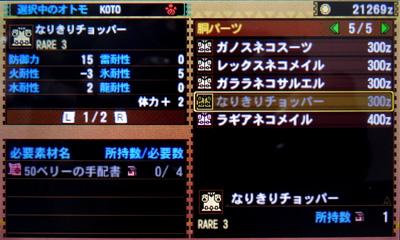 MH4_20131105-03.jpg
