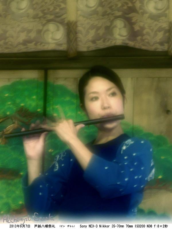 ピンずらしSC00791