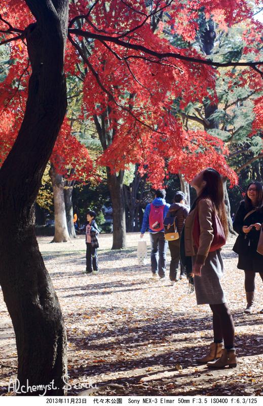 代々木公園DSC03752
