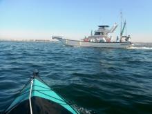 乗合釣り船 20131201