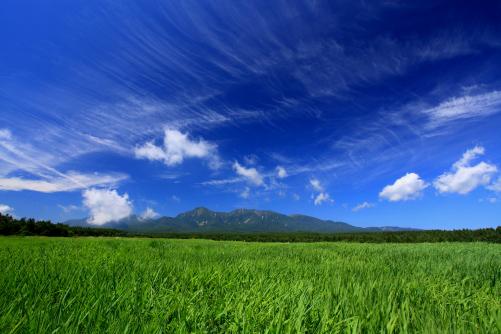 青空に映える雲と緑の草原と八ヶ岳