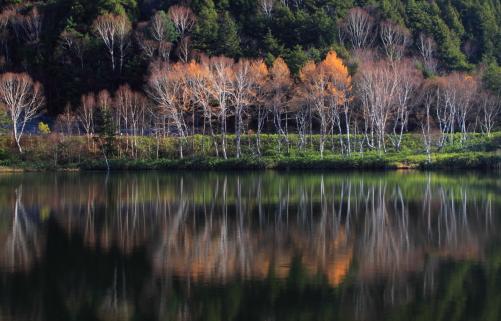 志賀高原木戸池
