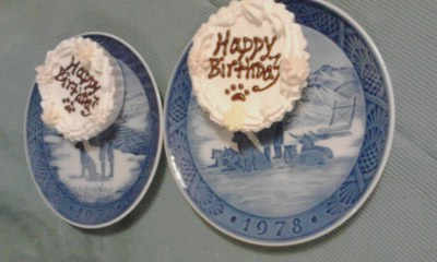 BirthdayCake20131127a.jpg