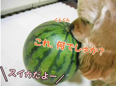 001_20130721215228.jpg