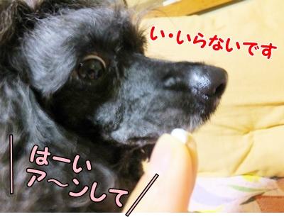 004_20131203213836d51.jpg
