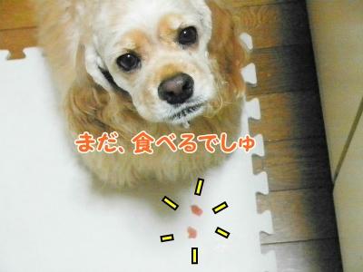 015_20130721215303.jpg
