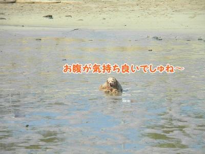 052_20130819212647d67.jpg