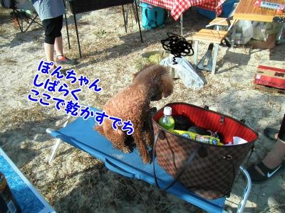 100_201310231952372e8.jpg