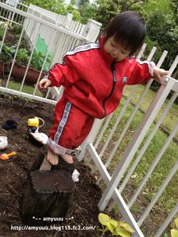 oniwadehadasi22013jpg.jpg