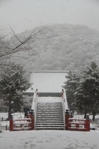 snow2014 (5)