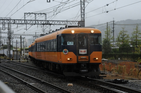 DSC_3808.jpg