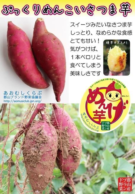 131111めんげ芋1_s