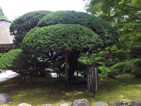円通院庭園2