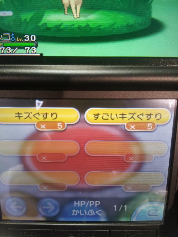 ポケモンXY先行体験版10