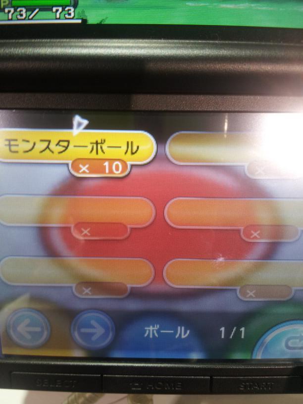 ポケモンXY先行体験11